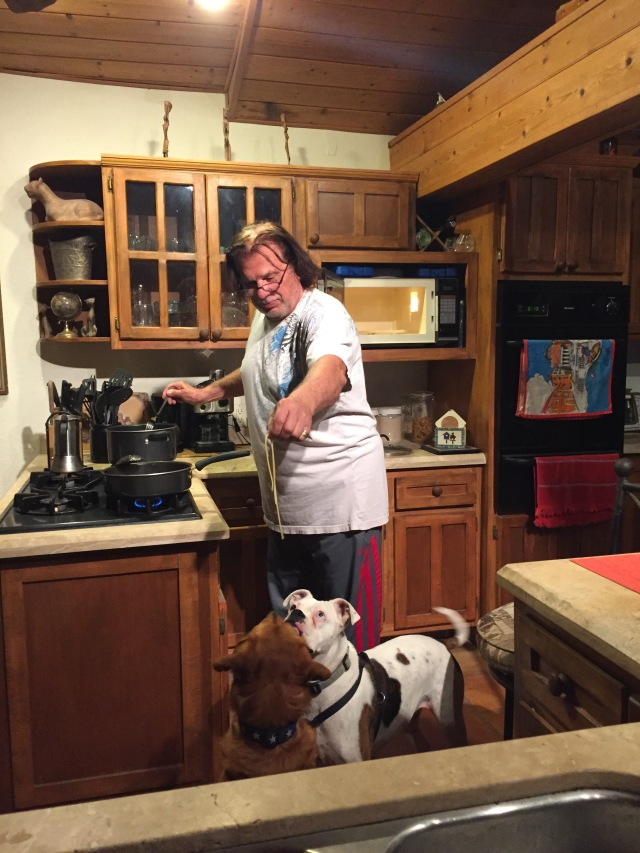 Pasta and dogs